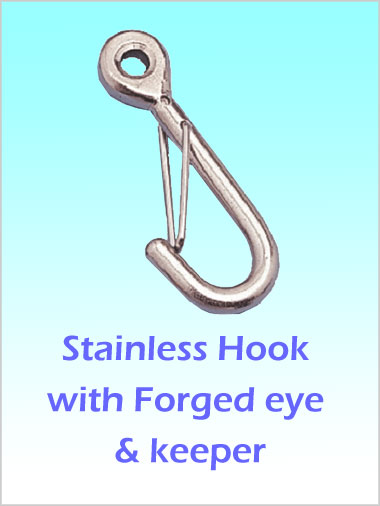 Stainless Hook with forged Eye and S/S Keeper