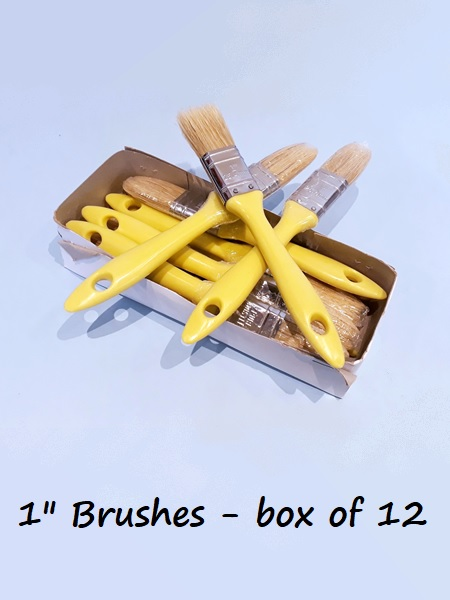"Pure bristle Paintbrushes 1"" - box of 12"