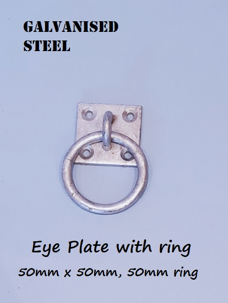 Galvanised Eye plate with ring